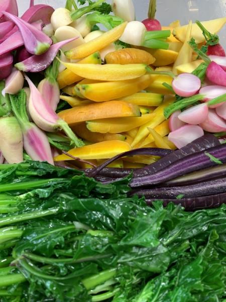 本日の野菜たち